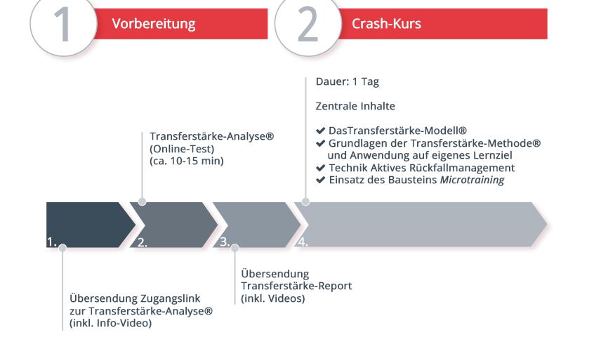 Schaubild zum Ablauf des Crash-Kurses | Transferstärke® - Prof. Dr. Axel Koch