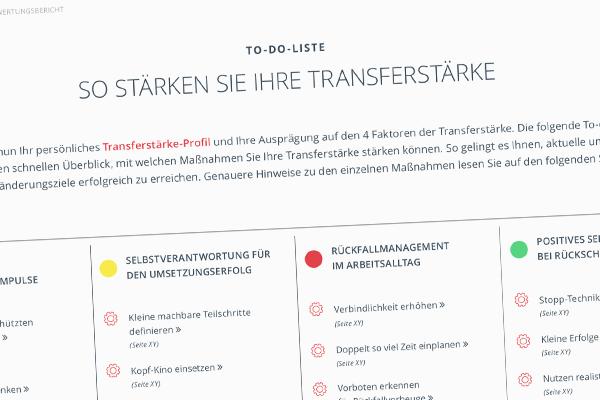 Transferstärke-Methode® kennenlernen - Schritt 2 | Prof. Dr. Axel Koch
